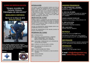 """Curso """"Grupos juveniles de carácter violento: Estrategias de Intervención"""". Ctf Seguridad"""