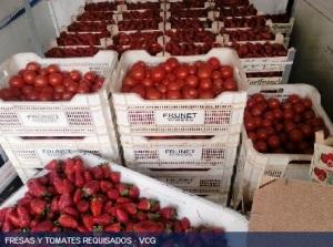 fresas la linea