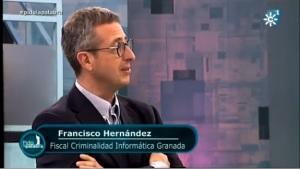 FRANCISCO HERNANDEZ FISCAL CRIMINALIDAD INFORMATICA GRANADA