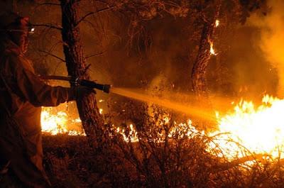 Delito de incendio. Delito de peligro abstracto